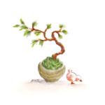 小鳥と盆栽3