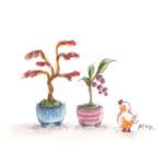 小鳥と盆栽1