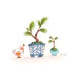 小鳥と盆栽6
